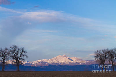 Scenic Views Photograph - Twin Peaks View Between The Trees by James BO  Insogna