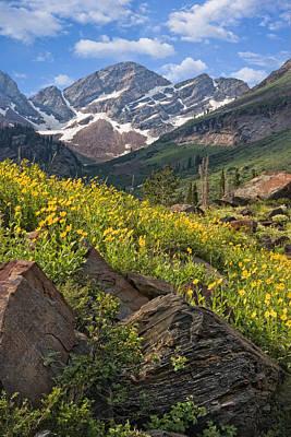 Photograph - Twin Peaks Wilderness Utah by Utah Images