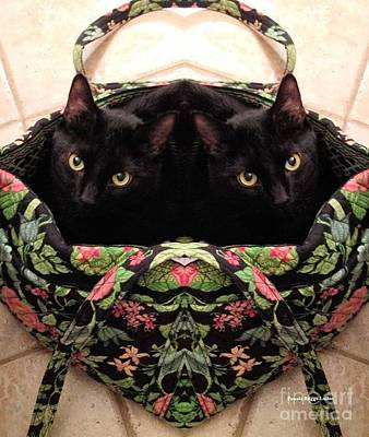 Art Print featuring the photograph Twins by Luther Fine Art