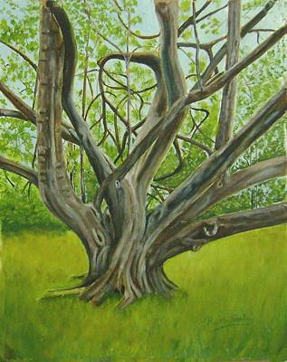 Painting - Twisted Oak by Ruth Seal