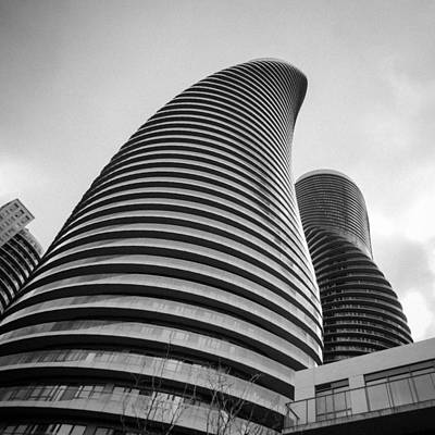Photograph - Twisted Sisters  7d01333 by Guy Whiteley