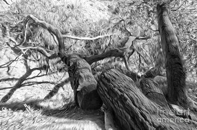 Painting - Twisted Tree - 03 by Gregory Dyer