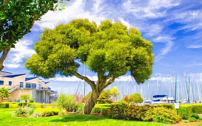 Cloud Photograph - Twisted Trunk At Pier 39 by John M Bailey