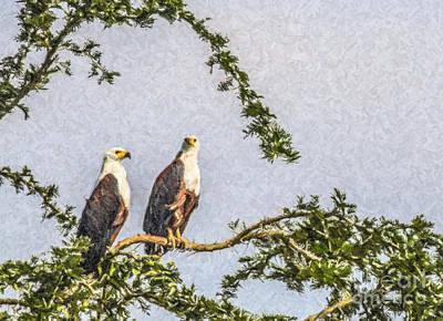 Africa Photograph - Two African Fish Eagles Haliaeetus Vocifer  by Liz Leyden