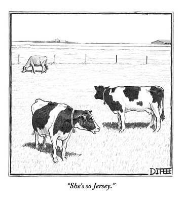 Cow Wall Art - Drawing - Two Spotted Cows Looking At A Jersey Cow by Matthew Diffee