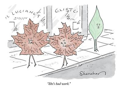Niagra Falls Drawing - Two Brown Leaves Speak About A Green Leaf by Danny Shanahan