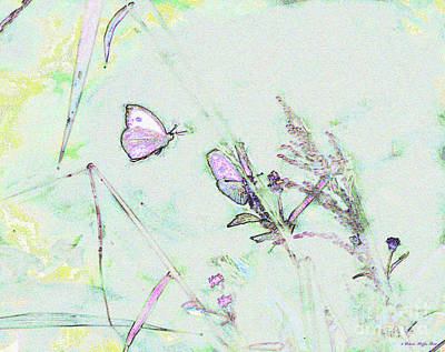 Photograph - Two Butterflies by Patricia Griffin Brett