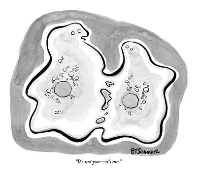 Breakup Drawing - Two Cells Are Dividing/breaking Up by Benjamin Schwartz