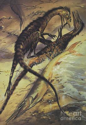 Splashing In The Tide Digital Art - Two Compsognathus Dinosaurs Fighting by Jan Sovak