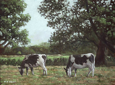 Painting - Two Cows In Field At Throop Dorset Uk by Martin Davey
