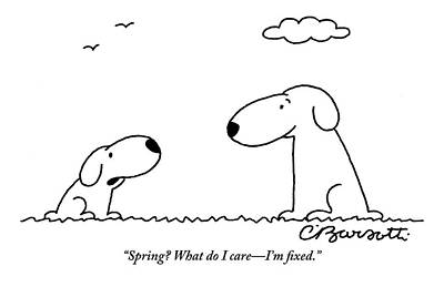Neutered Drawing - Two Dogs Are Seen Talking To Each Other by Charles Barsotti