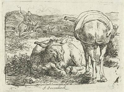 Donkey Drawing - Two Donkeys, Print Maker Jan Van Ossenbeeck by Jan Van Ossenbeeck
