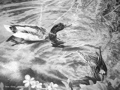 Photograph - Two Ducks  Bw by Don Vine