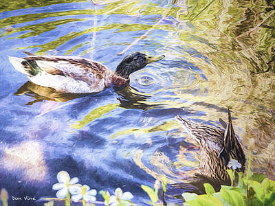 Photograph - Two Ducks by Don Vine