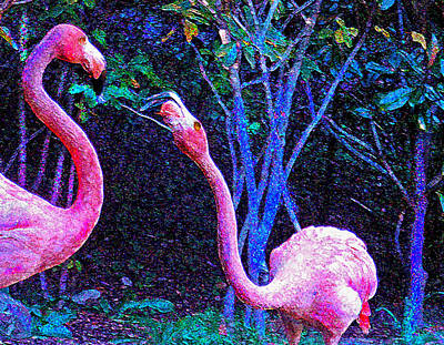 Digital Art - Two Flamingos by Jane Schnetlage