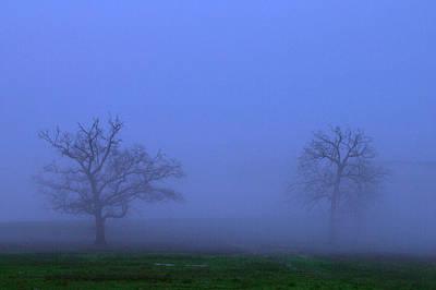 Two Foggy Trees Original by Brian Harig