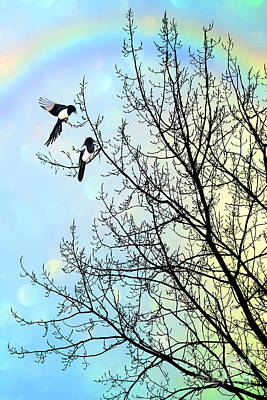Magpies Painting - Two For Joy by John Edwards