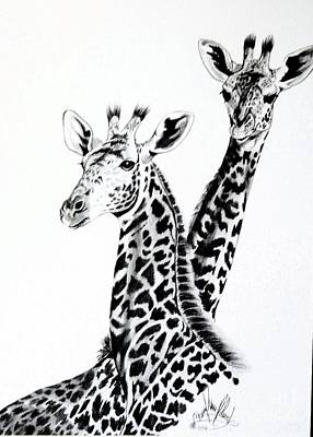 Drawing - Giraffes  by Cheryl Poland