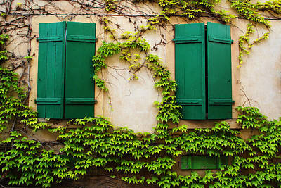 Two Green Shutters And Ivy In Alsace Art Print