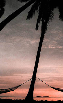 Photograph - Two Hammocks by Christy Usilton