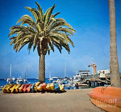 Photograph - Two Harbors Beach by Gabriele Pomykaj