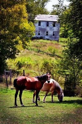 Pasture Scenes Mixed Media - Two Horse Amish Town by Brenda Harrah