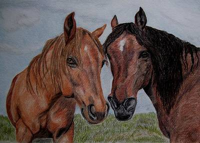 Drawing - Two Horses by Joan Pye