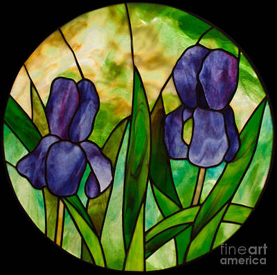 Youghiogheney Glass Glass Art - Two Irises by David Kennedy