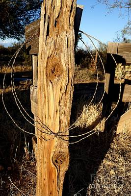 Photograph - Two Knot Fence Post by Kerri Mortenson