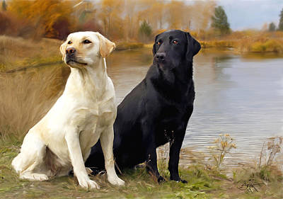 Two Labs Art Print