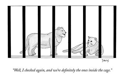 Zoo Animals Drawing - Two Lions In A Cage Converse by Mathew Stiles Davis