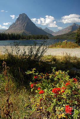 Photograph - Two Medicine Lake In Glacier by Cindy Murphy - NightVisions
