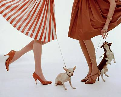 Stripes Photograph - Two Models With Dogs by William Bell