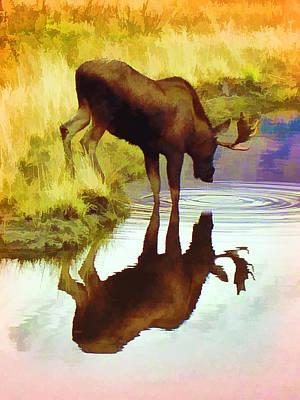 Two Moose  Art Print