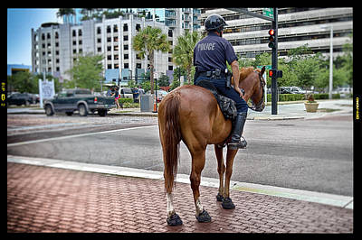 Enforcer Photograph - Two Of Tampa's Finest by Shawn Bussey