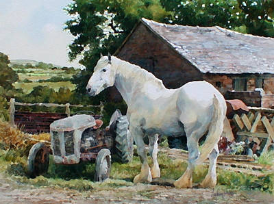 Two Old Grays Art Print by Anthony Forster