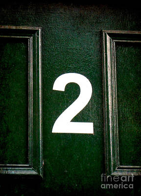 Photograph - Two On Green Door by Valerie Reeves