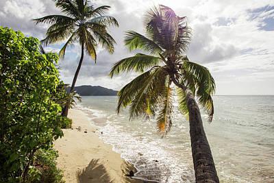 Photograph - Two Palm Trees On The Beach With Sun by Jenna Szerlag