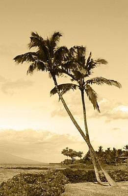 Photograph - Two Palms At Mckenna Beach On Maui by John Orsbun
