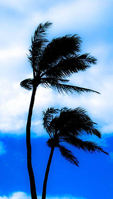 Photograph - Two Palms by Lisa Cortez