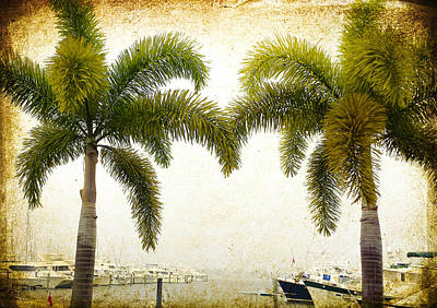 Photograph - Two Palms Marina Vintage Image Art  by Jo Ann Tomaselli