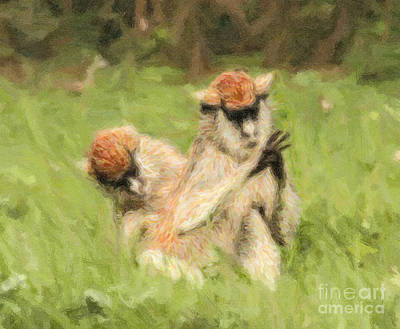 Monkey Digital Art - Two Patas Monkeys Erythrocebus Patas Grooming by Liz Leyden