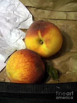 Two Peaches Art Print by Miriam Danar