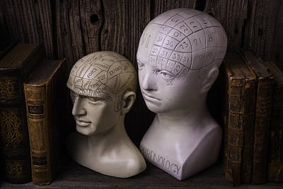Two Phrenology Heads Art Print by Garry Gay