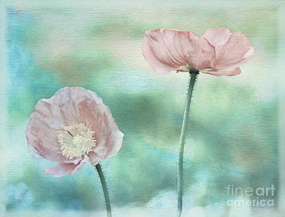 Two Poppies Textured Photograph Art Print by Clare VanderVeen