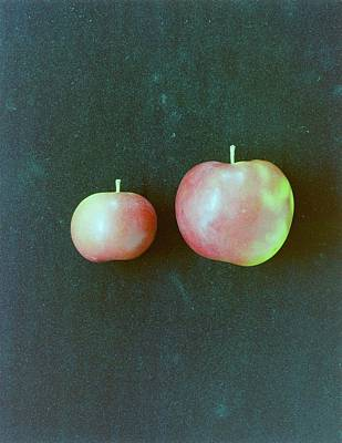 Vegetables Photograph - Two Red Apples by Romulo Yanes