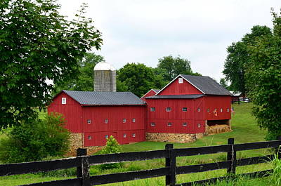Art Print featuring the photograph Two Red Barns by Cathy Shiflett