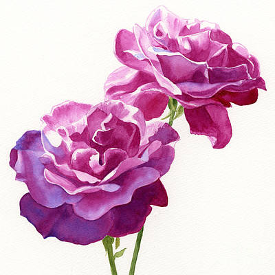 Garden Painting - Two Red Violet Rose Blossoms Square Design by Sharon Freeman