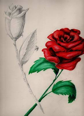 Diane Peters Painting - Two Roses by Diane Peters