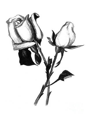 Drawing - Two Roses by Leara Nicole Morris-Clark